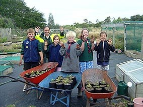 Woodlands scouts get their hands dirty at the nursery.