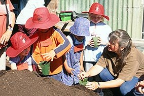 School children learn how to pot up plants.